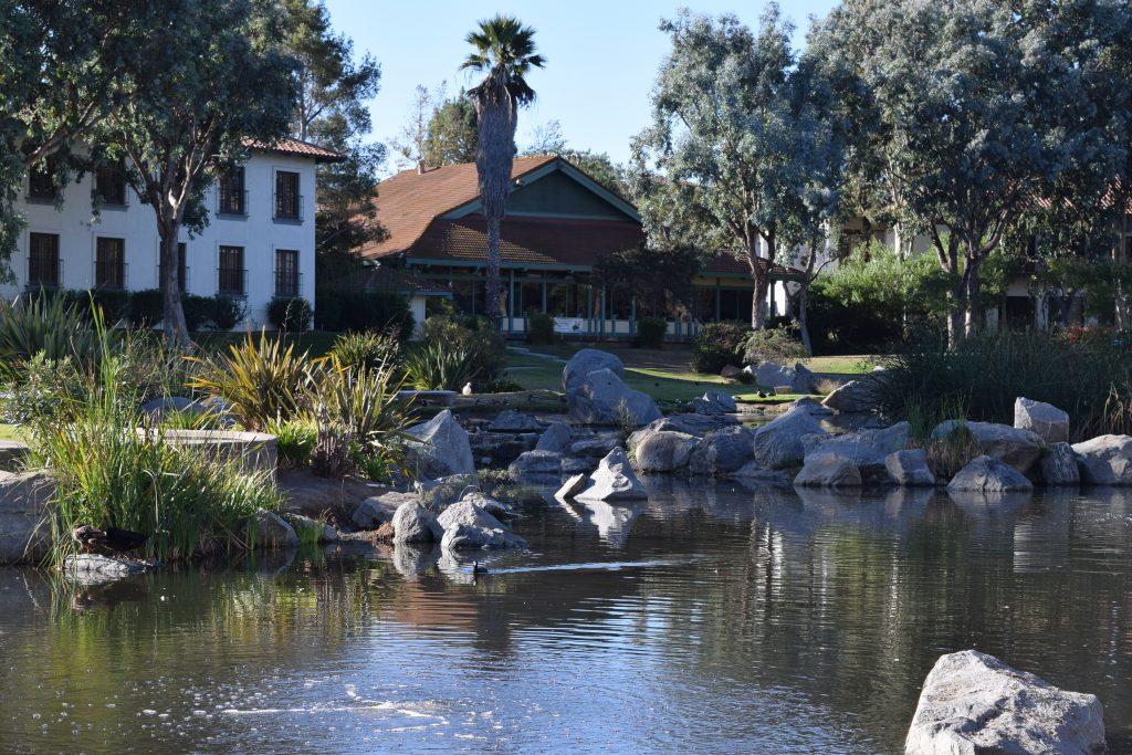 Webb Park Lake